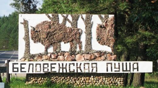 Фотовыставка к 600-летию Беловежской пущи пройдет в Госдуме России
