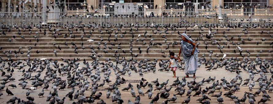 31.03.2010 Индия, Хайдарабад