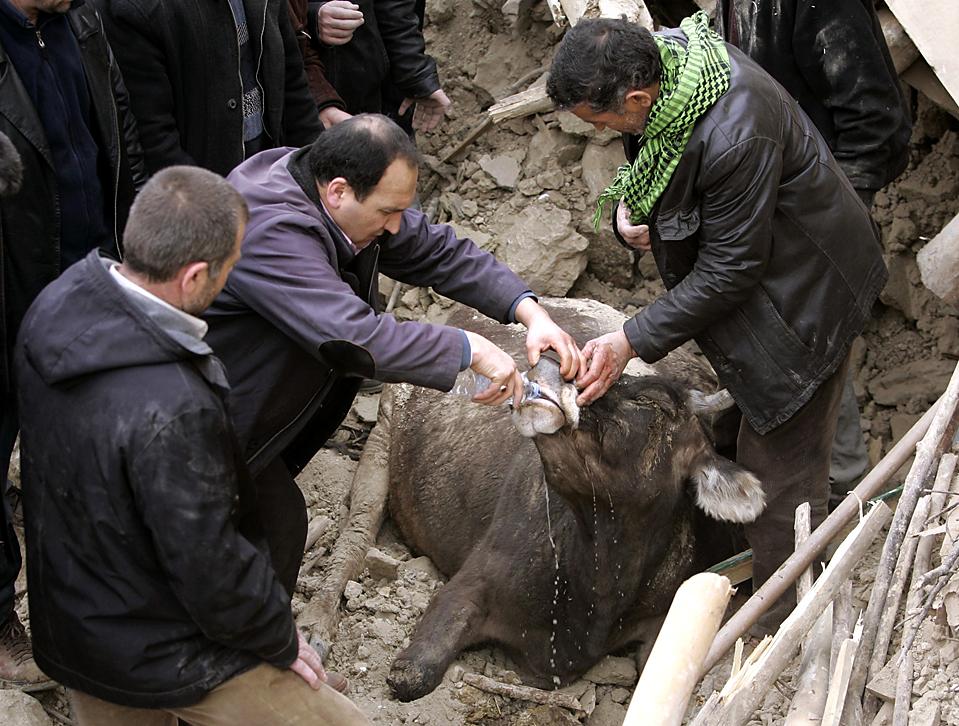 10.03.2010 Турция, Окулар
