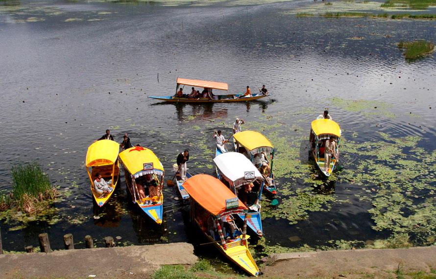 19.04.2010 Индия, Шринагар