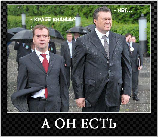 Медведев, Янукович, Венок