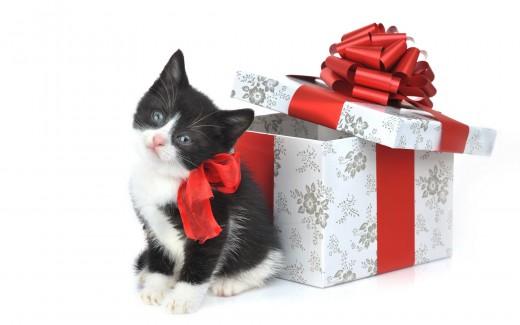 Несколько слов о подарках.