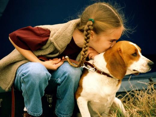 Дети понимают собак лучше, чем взрослые