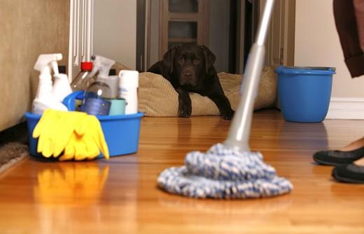 С какой периодичностью делать уборку