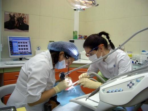 От чего зависит стоимость имплантации зубов