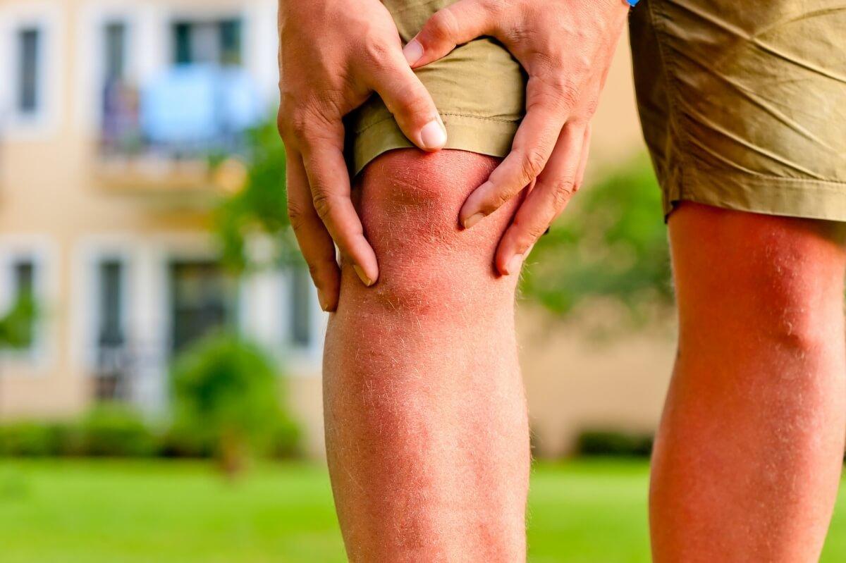 Суставы айкидо лечение магнит для лечения суставов купить
