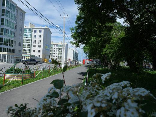 покупателей квартир в городах Черноморского побережья