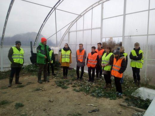 Школьная экскурсия на агрофирму «Ульянино»: наглядное изучение естественных наук