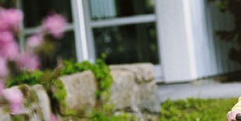 Незаменимые помощники в саду и в огороде