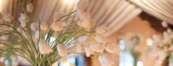 Волшебство оформления свадьбы цветами
