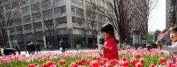 День в фотографии: 18 марта 2010