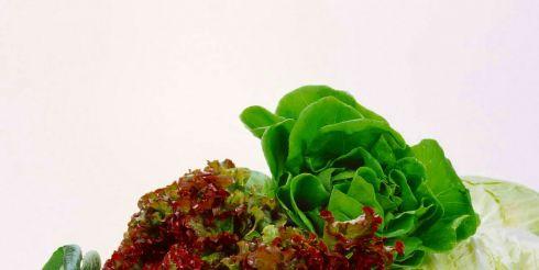 Как заработать на выращивание зелени