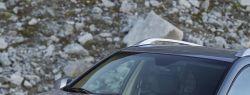 Chevrolet Captiva – успех у широкой публики