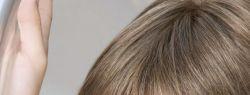 Особенности париков из натуральных волос