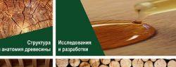 Pinotex раскрывает тайны дерева – профессиональная экспертиза в деревозащите становится доступна российским потребителям