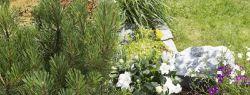 Комплекты садового оборудования для домашнего садоводства GARDENA