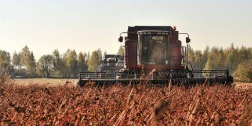 Юрий Лужков сообщил, какой урожайности гречихи ждут в агрокомплексе «Веедерн»