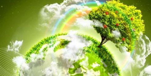 Берегите окружающую среду — день экологии