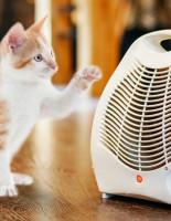 Почему стоит купить тепловентилятор?
