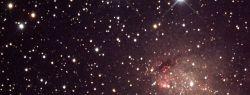 Астрономы получили снимок кольца из черных дыр