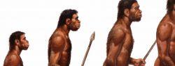 Предложена новая концепция формирования Homo sapiens
