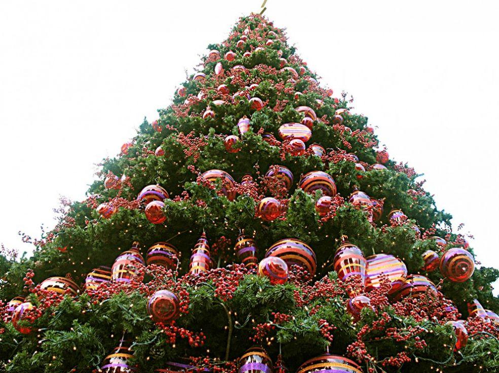 Новогодняя елка в тематическом парке Эверлэнд, Корея
