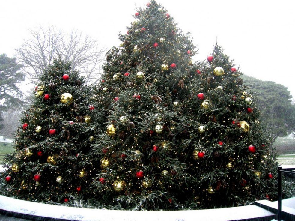 """Новогодняя """"елка"""" в Берлине"""