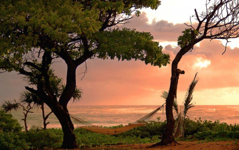 Гамак на Гавайях