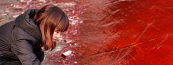 Красный дождь в Индии больше не загадка природы