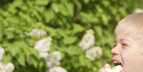 Мифы об астме