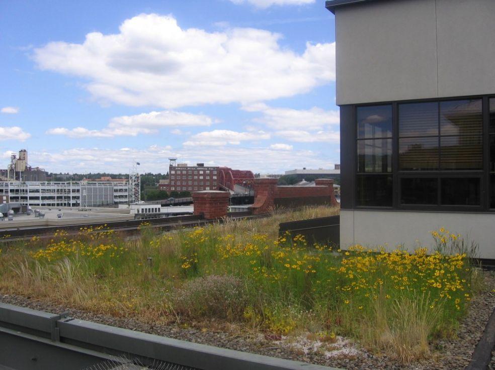 Зеленая крыша в Портланде