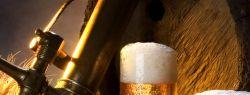 Здоровье мышц поддержит пиво?