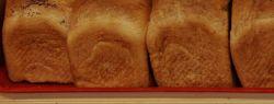 Опасна ли плесень на хлебе для нашего здоровья? Как правильно хранить хлеб