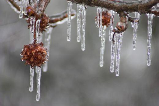 Зимняя сказка приближается